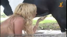 Pompino al cavallo che gode in bocca